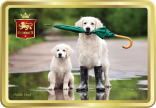 Puddle Dogs tin image