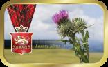 Flower of Scotland tin image