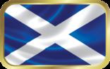 Scottish Flag tin image