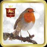 Robin Redbreast tin image
