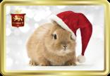 Santa Bunny tin image