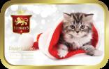 Winter Kitten tin image