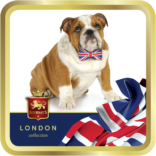 British Bulldog tin image