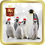 Santas Penguins tin image