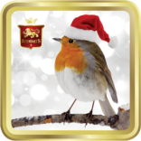 Santa Robin tin image