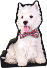 British Westie tin image